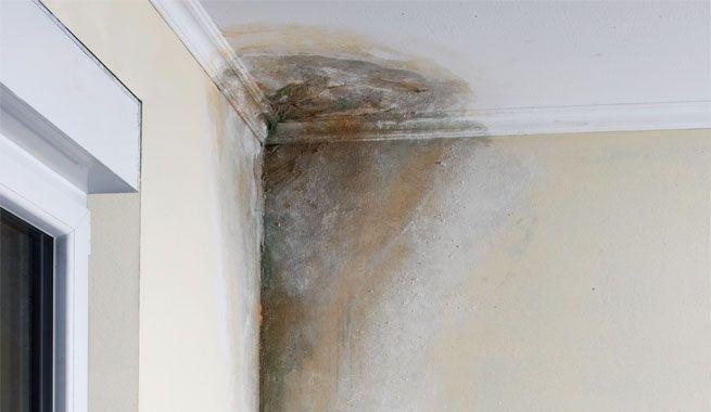 Soluciones para eliminar humedades en las viviendas