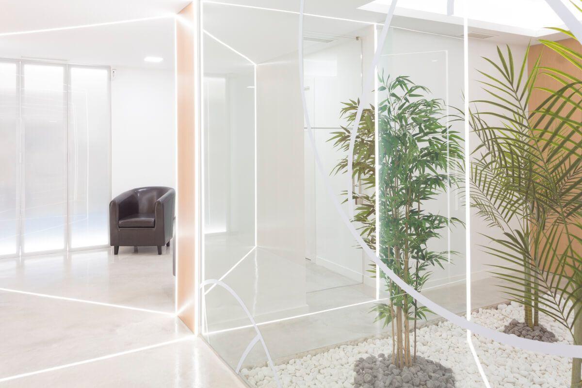 Jardín interior. Reforma de local comercial para clínica en Elda por Araque Maqueda