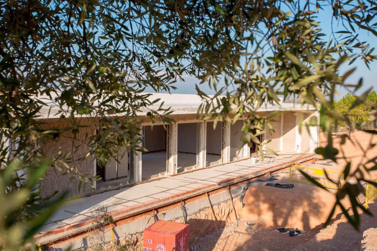 Detalle entre olivos de proyecto de chalet en Hondón de las Nieves (Alicante) por Araque Maqueda
